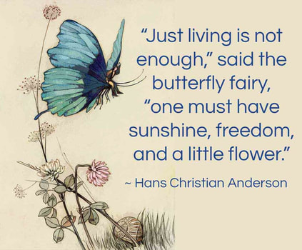 Fairies Chamber: Butterfly fairy quote